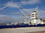 2014 小名浜港.jpg